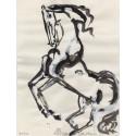 Cavallo rampante di Lorenzo Cascio