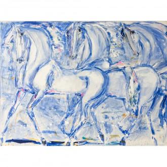 Cavalli Bleu