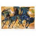 Cavalli litograph by Lorenzo Cascio